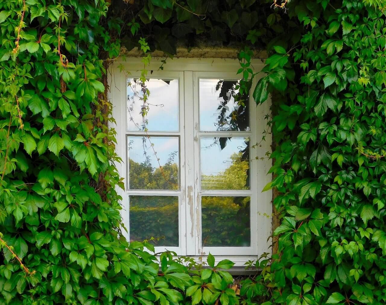 window-1679344_1280